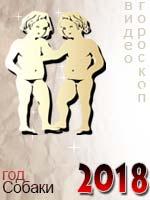 видео гороскоп на 2018 год Близнецы