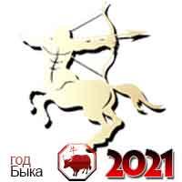 гороскоп на 2021 год Стрелец