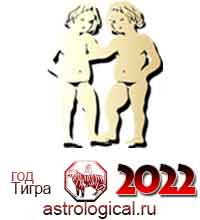 гороскоп на 2022 год Близнецы